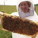 October 6th, 6:30pm 'Beyond the Bees' Knees,' Beekeeping Program by Charlotte Hubbard-sponsored by the Colon Garden Club.